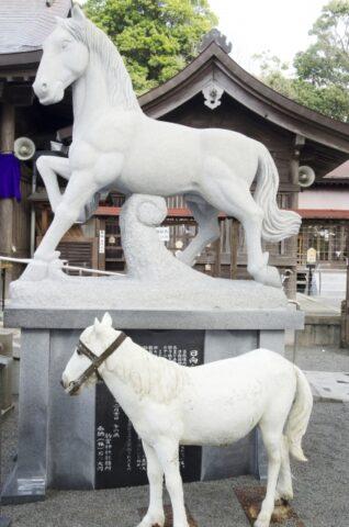 雨乞いの馬